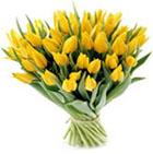 Kwiaty - tulipany